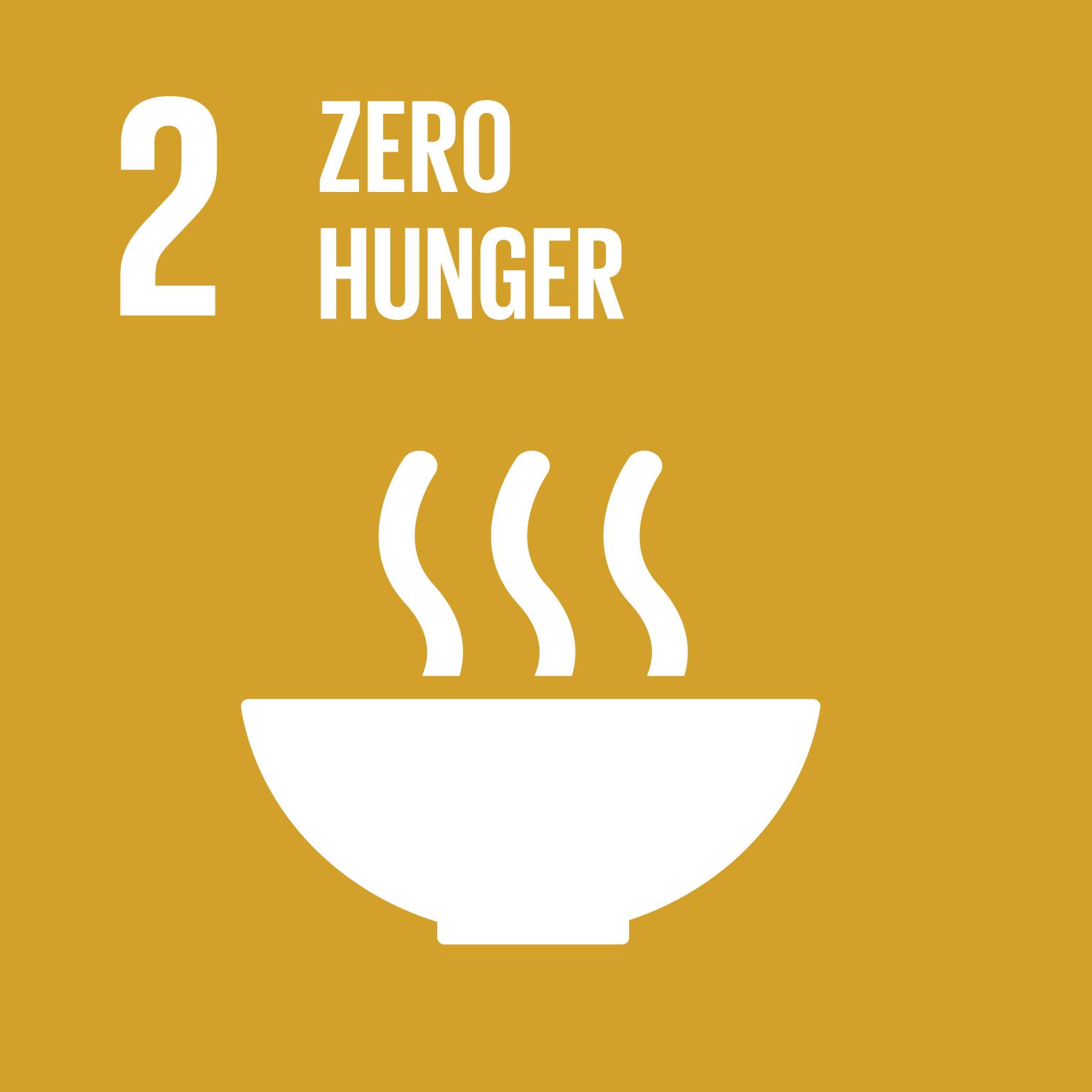 E SDG goals icons individual rgb 02