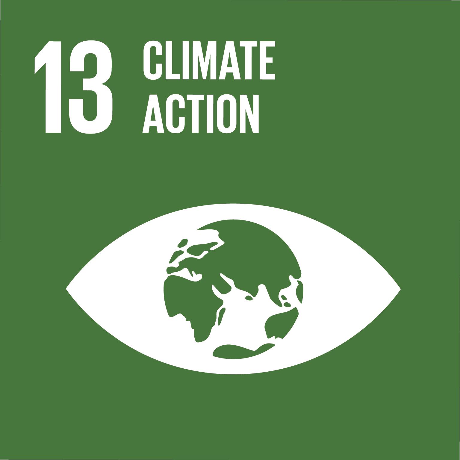E SDG goals icons individual rgb 13