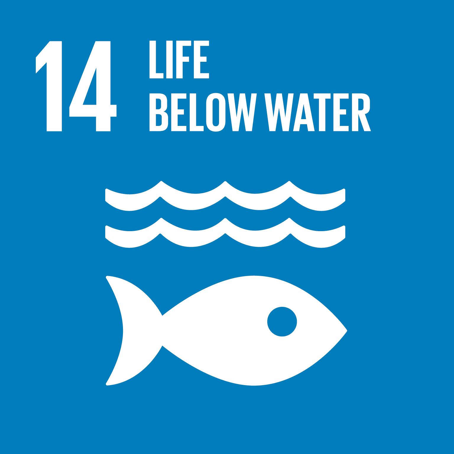 E SDG goals icons individual rgb 14