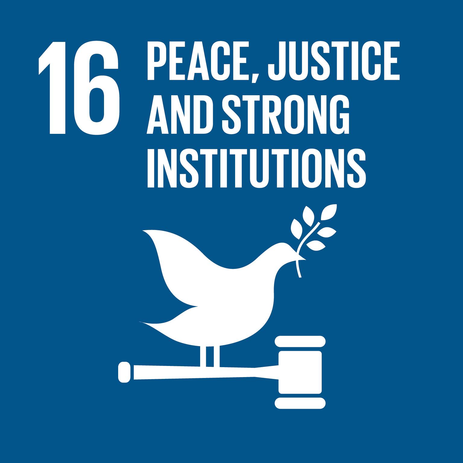 E SDG goals icons individual rgb 16