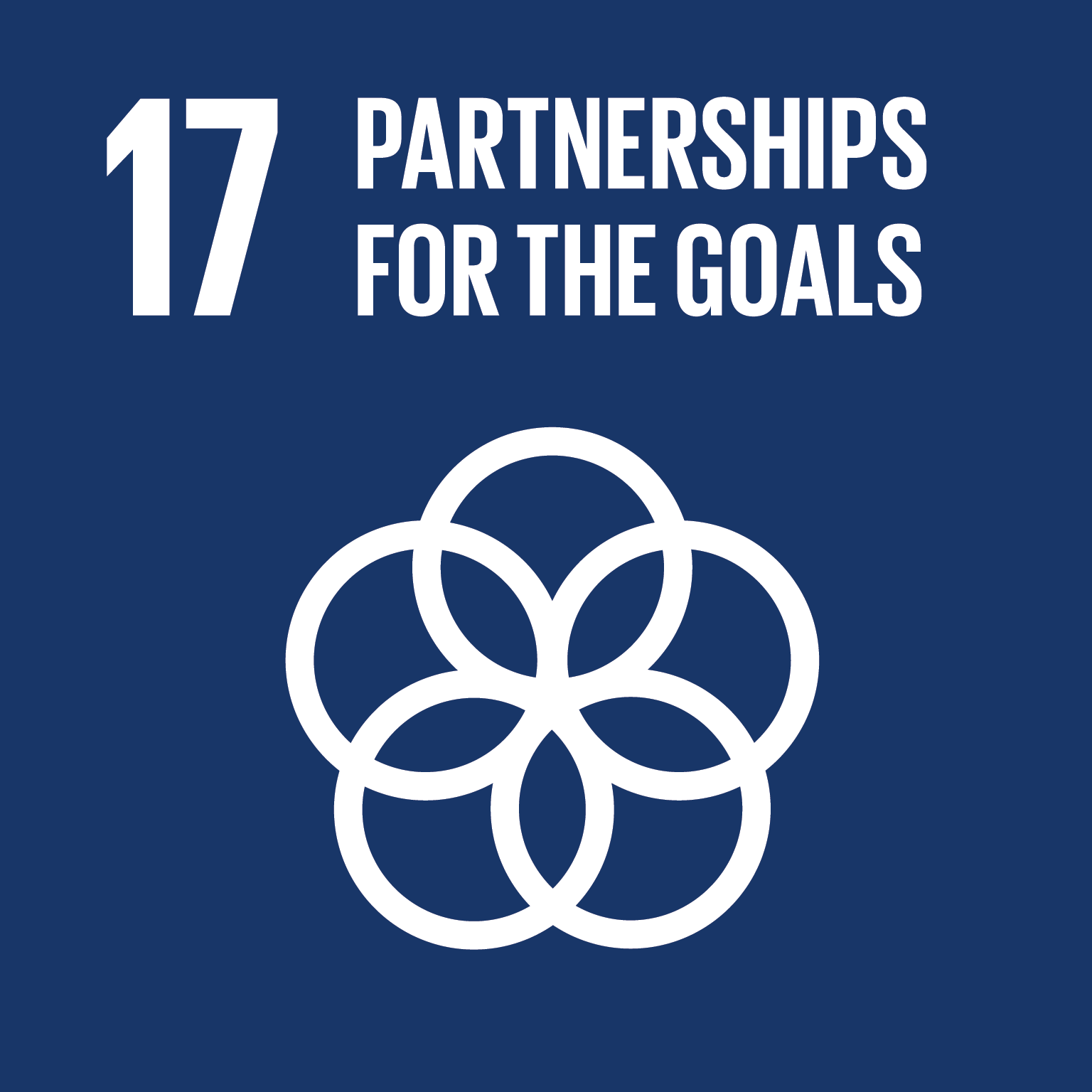 E SDG goals icons individual rgb 17